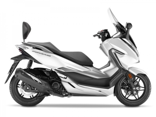 Honda Forza 250-300 (18-19) Sissybar Gri Kapaklı (Shad HOFR17RV + DORP05)